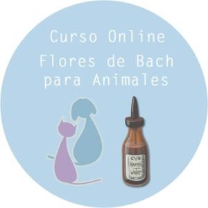 Curso Online Flores de Bach para Animales