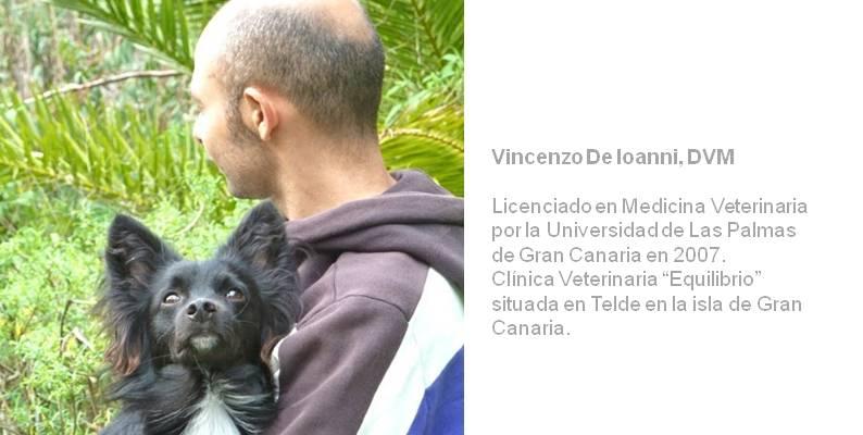 8 Vincenzo nutri que le doy de comer VI
