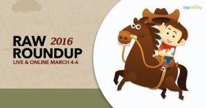 raw roundup 2016