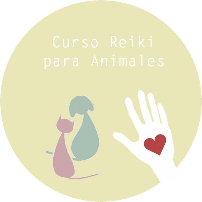curso reiki para animales
