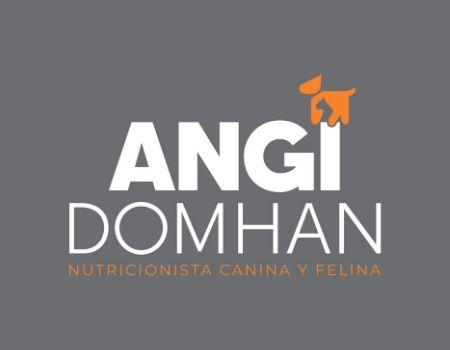 AngiDomhan