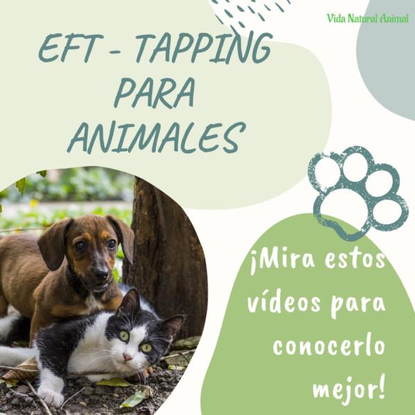 videos eft para animales