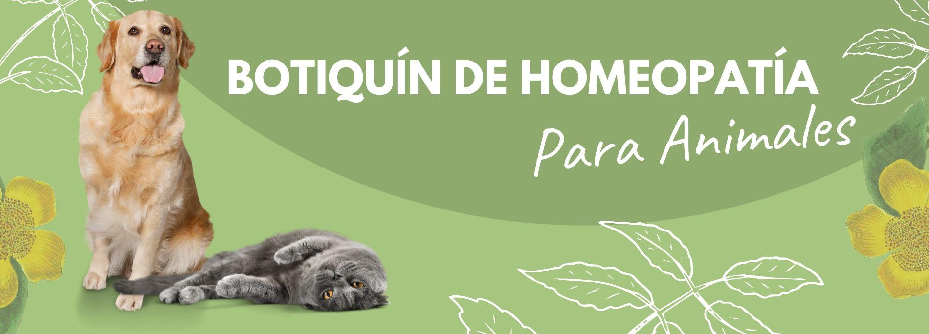 Curso Online Botiquín de Homeopatía para Animales