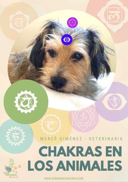 Chakras en los Animales